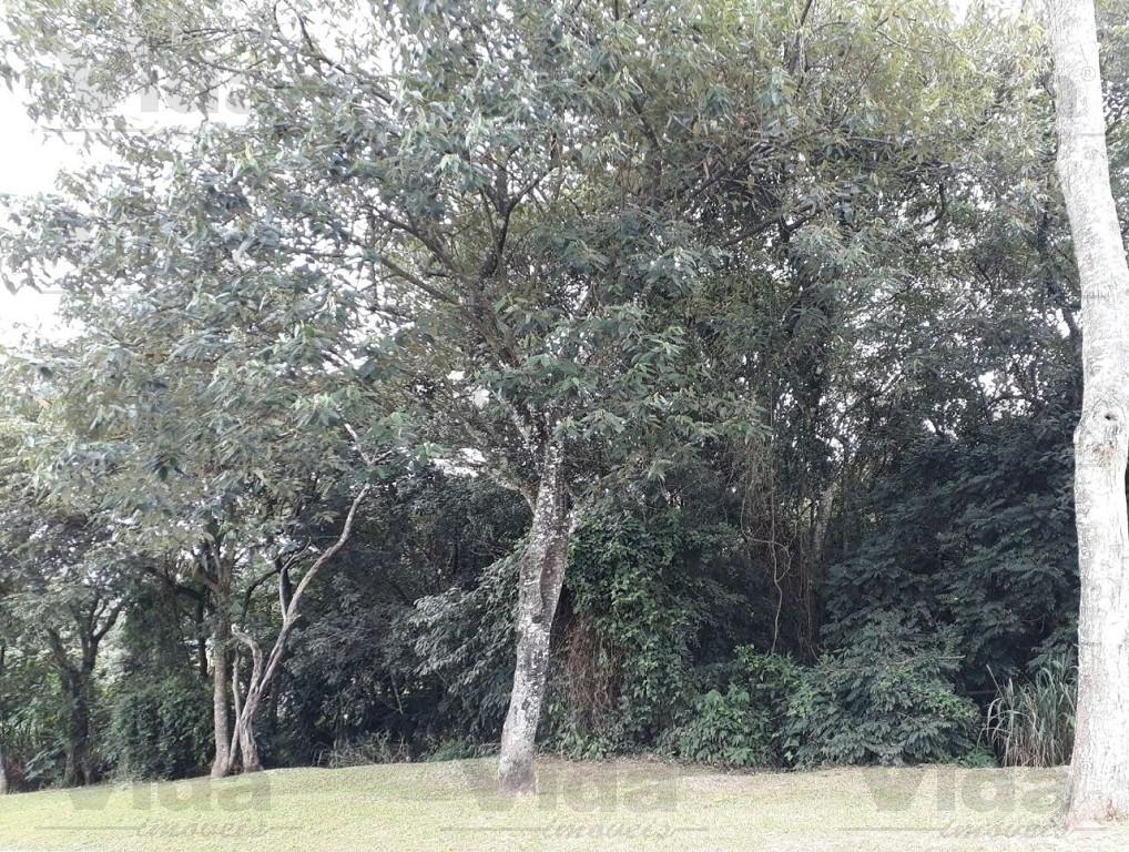 Terreno à venda em Parque Nova Jandira, Jandira - SP